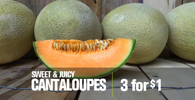 Cantaloupe 3 for $1